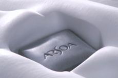 ARSOA presentation movie